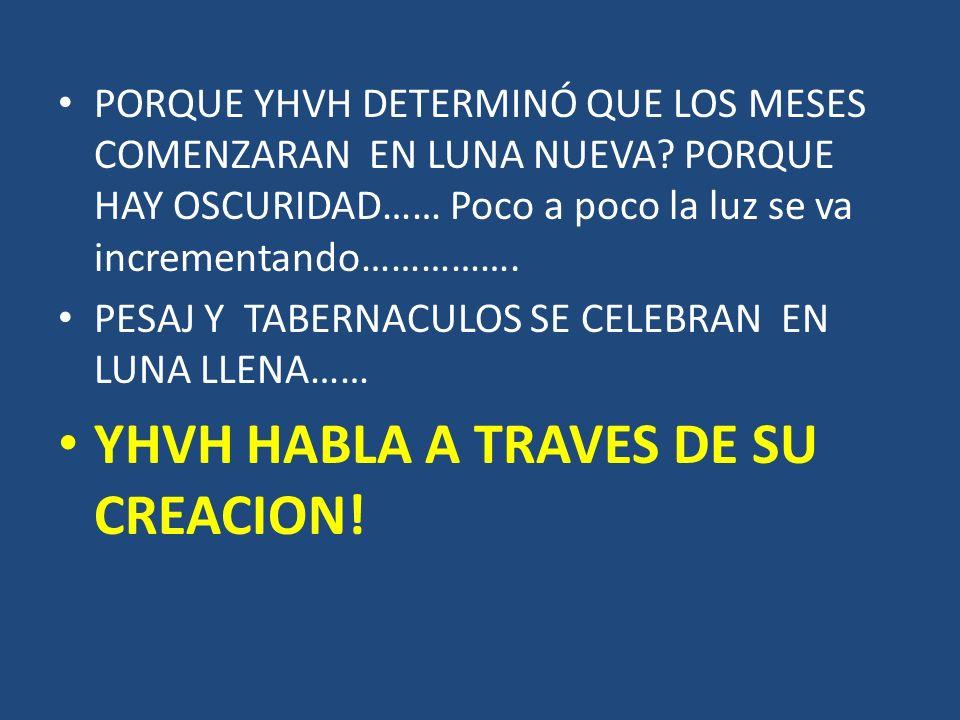 YHVH HABLA A TRAVES DE SU CREACION!