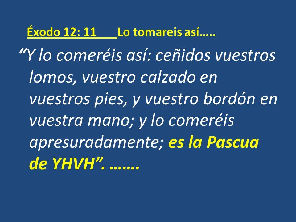 Éxodo 12: 11 Lo tomareis así…..