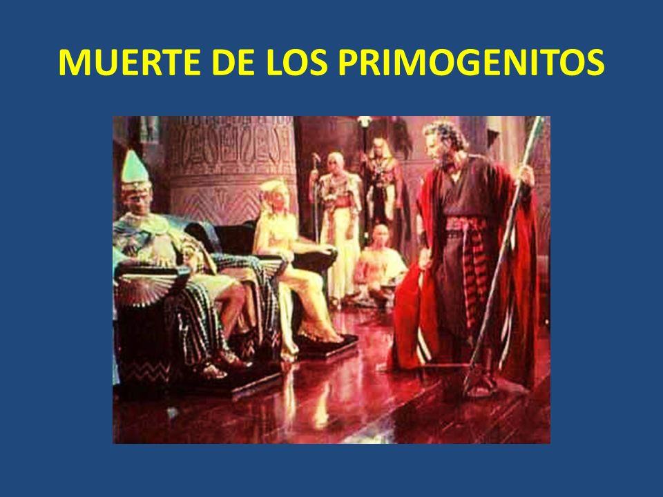 MUERTE DE LOS PRIMOGENITOS