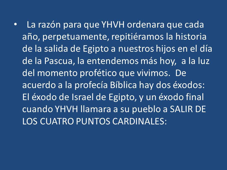La razón para que YHVH ordenara que cada año, perpetuamente, repitiéramos la historia de la salida de Egipto a nuestros hijos en el día de la Pascua, la entendemos más hoy, a la luz del momento profético que vivimos.