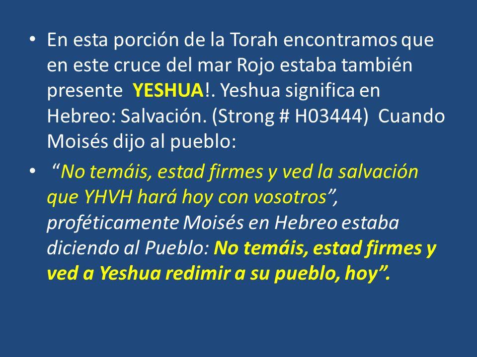 En esta porción de la Torah encontramos que en este cruce del mar Rojo estaba también presente YESHUA!. Yeshua significa en Hebreo: Salvación. (Strong # H03444) Cuando Moisés dijo al pueblo: