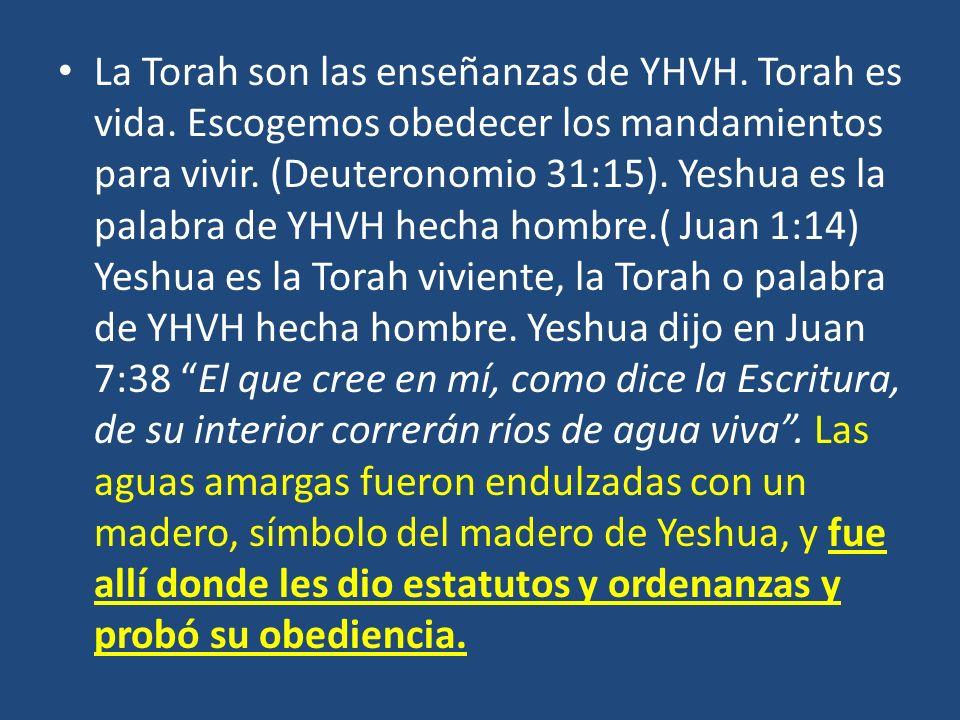 La Torah son las enseñanzas de YHVH. Torah es vida