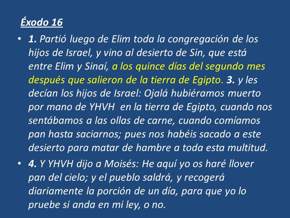 Éxodo 16