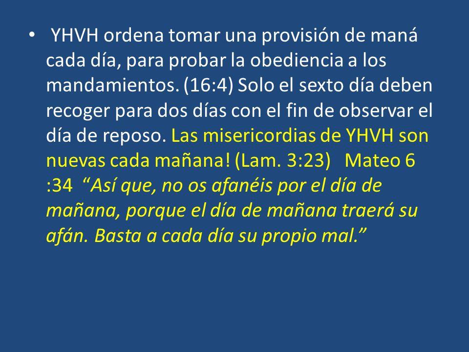 YHVH ordena tomar una provisión de maná cada día, para probar la obediencia a los mandamientos.