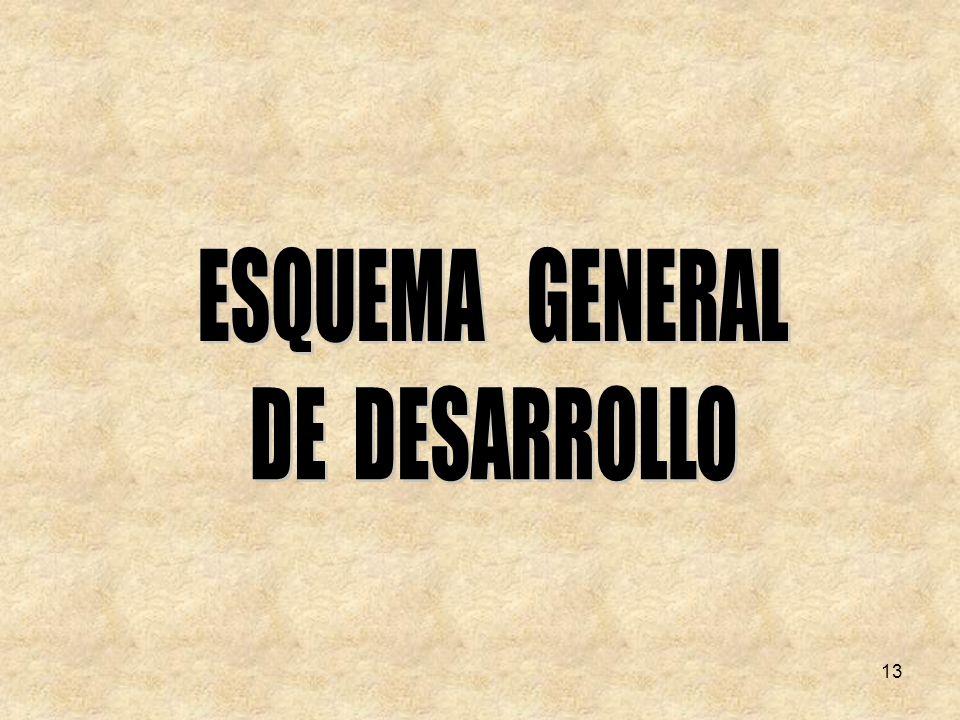 ESQUEMA GENERAL DE DESARROLLO 13