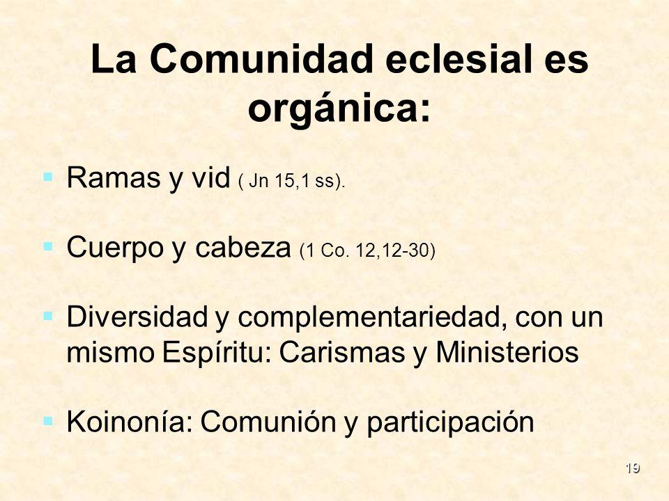 La Comunidad eclesial es orgánica: