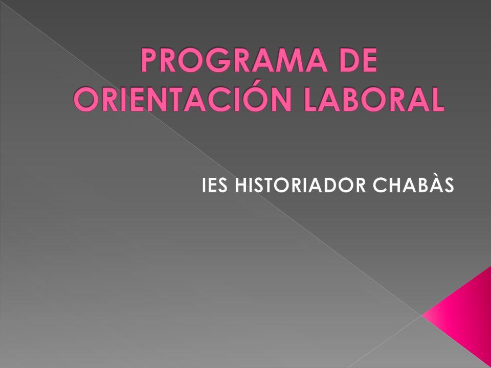 PROGRAMA DE ORIENTACIÓN LABORAL