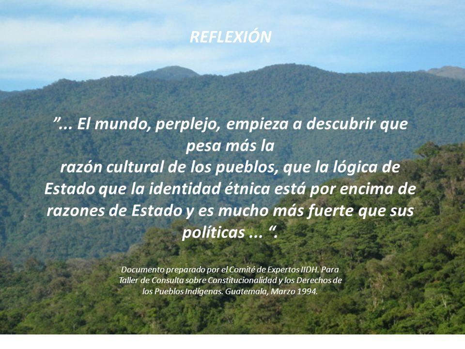 REFLEXIÓN ...