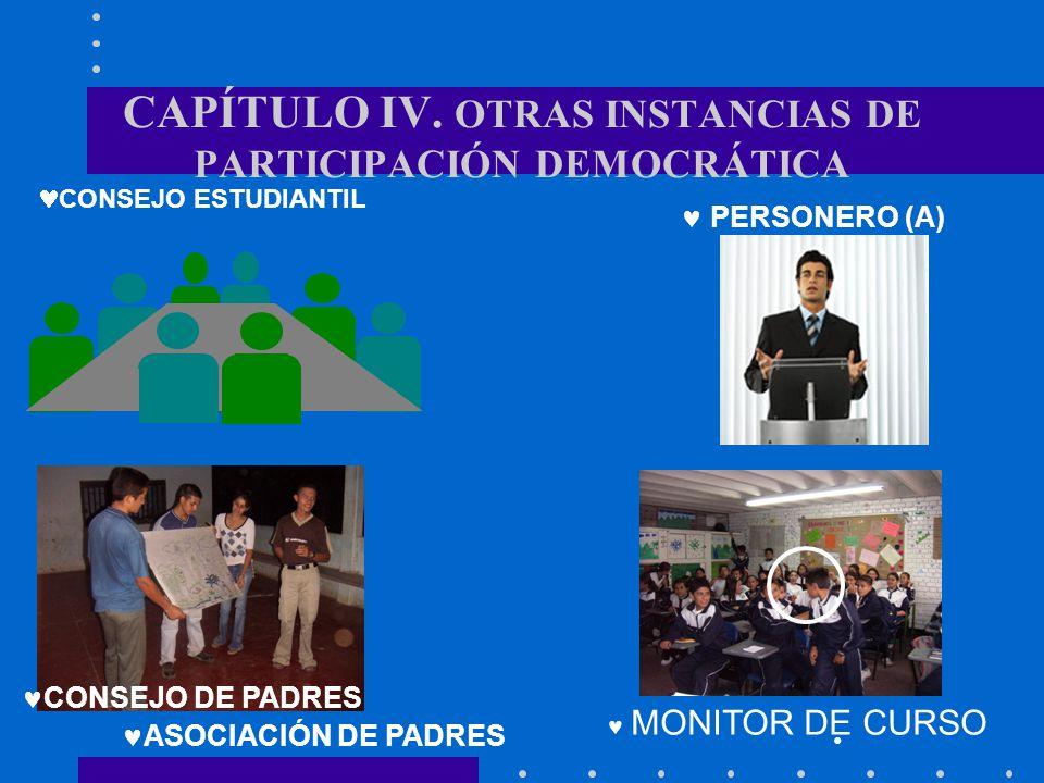 CAPÍTULO IV. OTRAS INSTANCIAS DE PARTICIPACIÓN DEMOCRÁTICA
