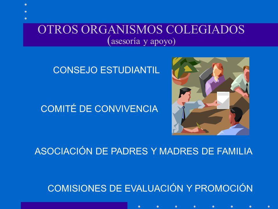OTROS ORGANISMOS COLEGIADOS (asesoría y apoyo)