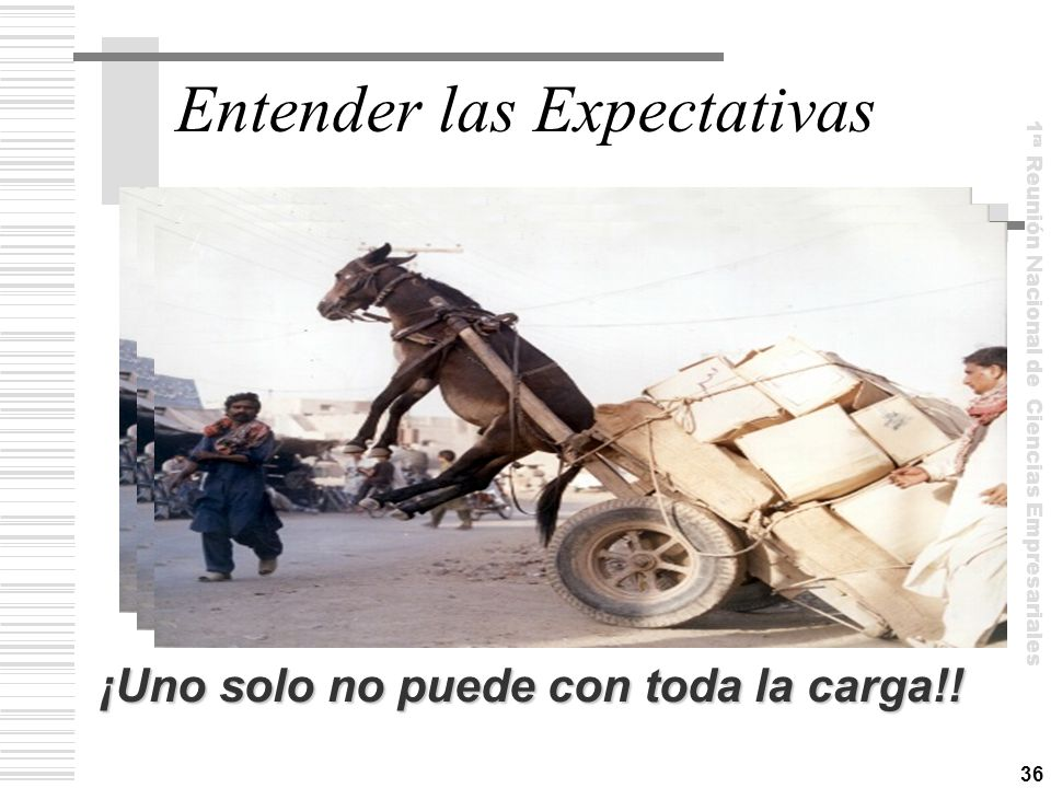 Entender las Expectativas