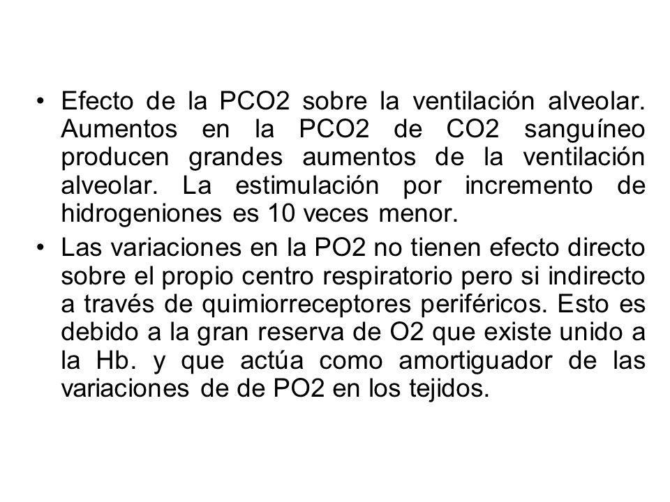 Efecto de la PCO2 sobre la ventilación alveolar