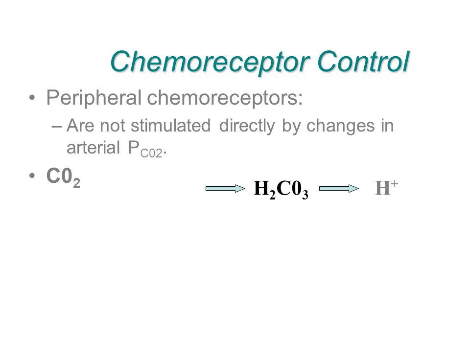 Chemoreceptor Control