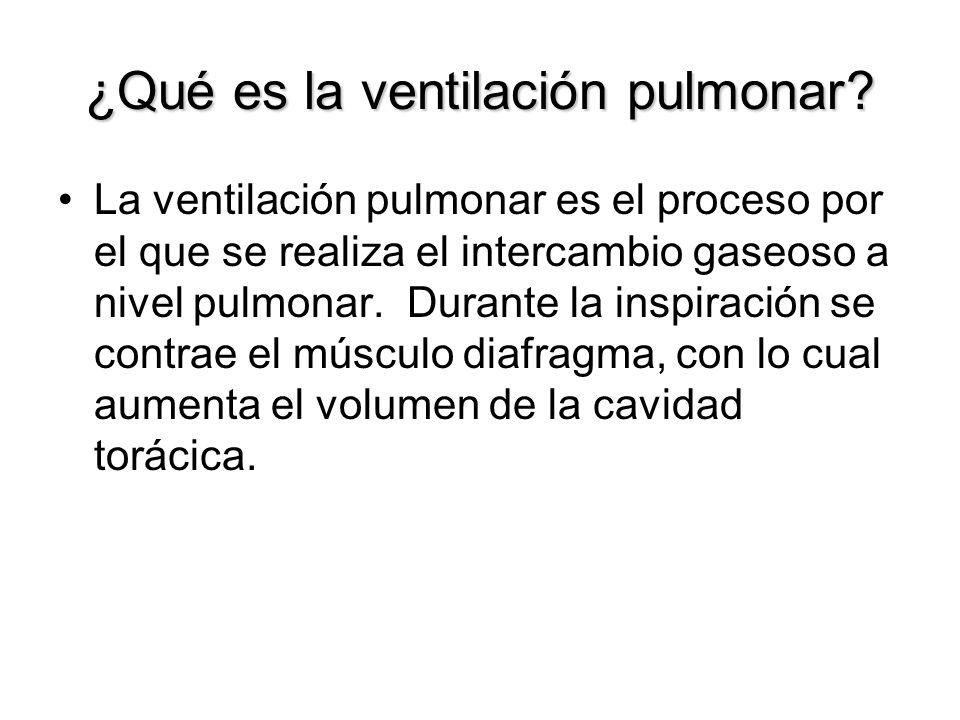 ¿Qué es la ventilación pulmonar