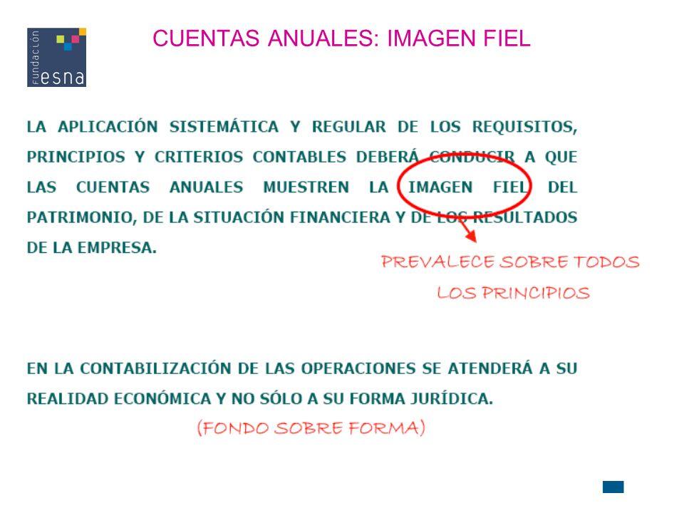 CUENTAS ANUALES: IMAGEN FIEL