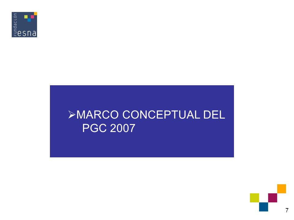 MARCO CONCEPTUAL DEL PGC 2007