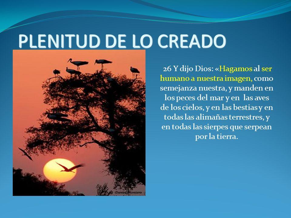 PLENITUD DE LO CREADO
