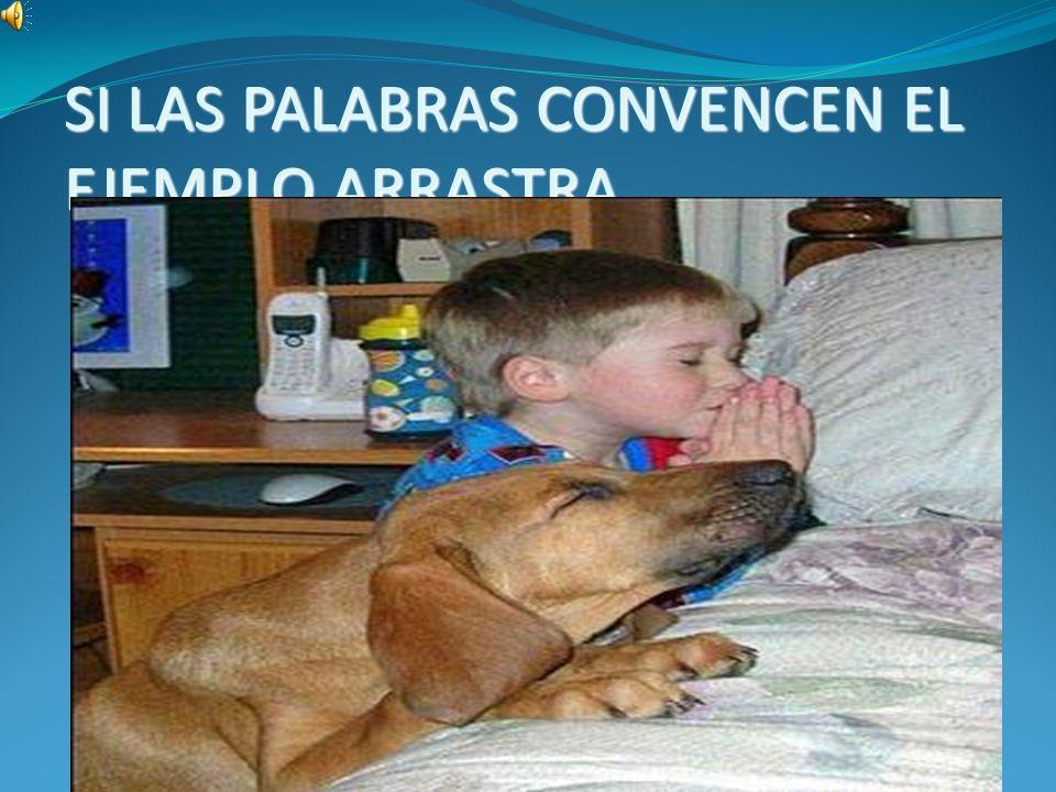 SI LAS PALABRAS CONVENCEN EL EJEMPLO ARRASTRA
