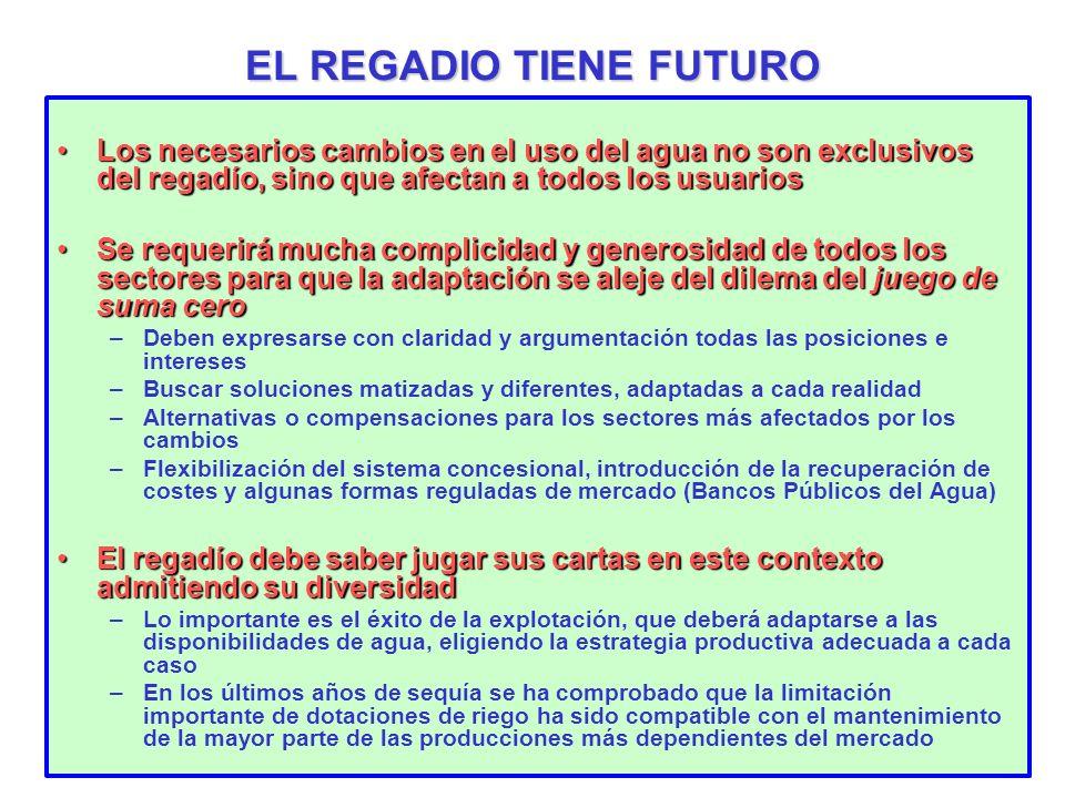 EL REGADIO TIENE FUTURO