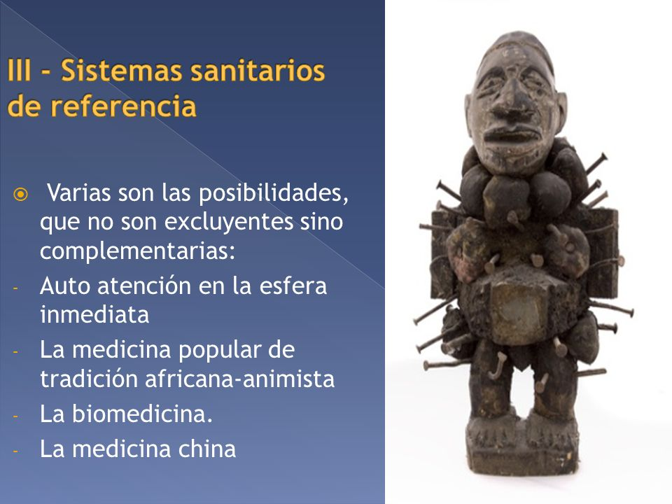 III - Sistemas sanitarios de referencia