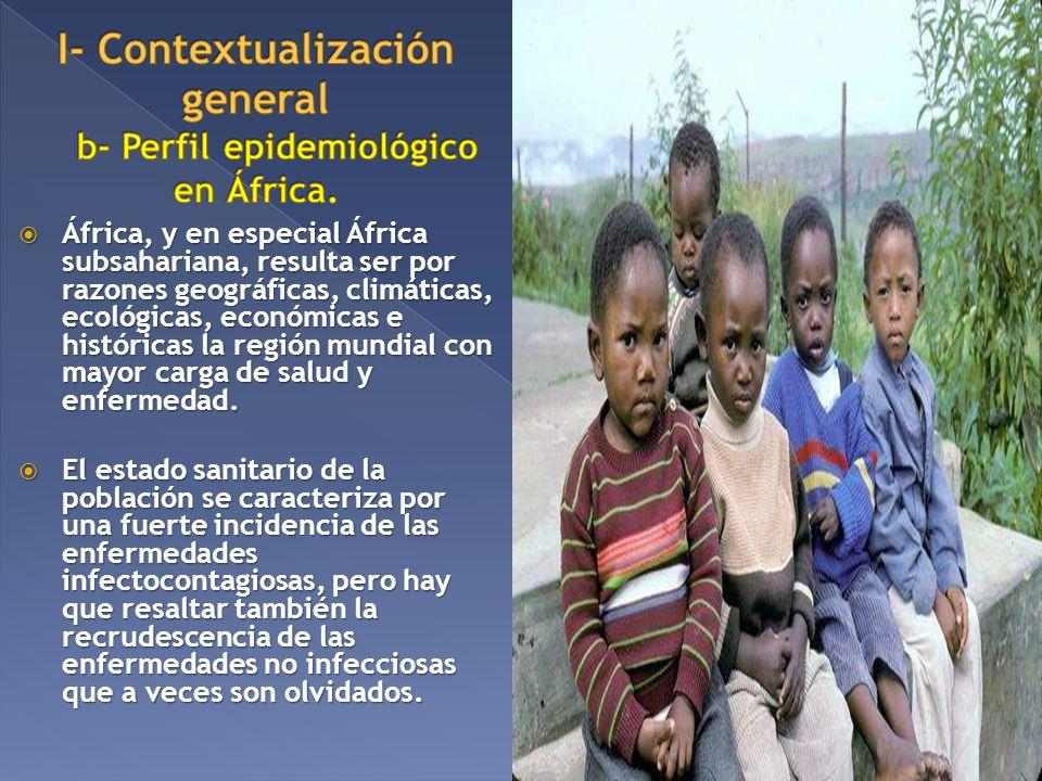 I- Contextualización general b- Perfil epidemiológico en África.