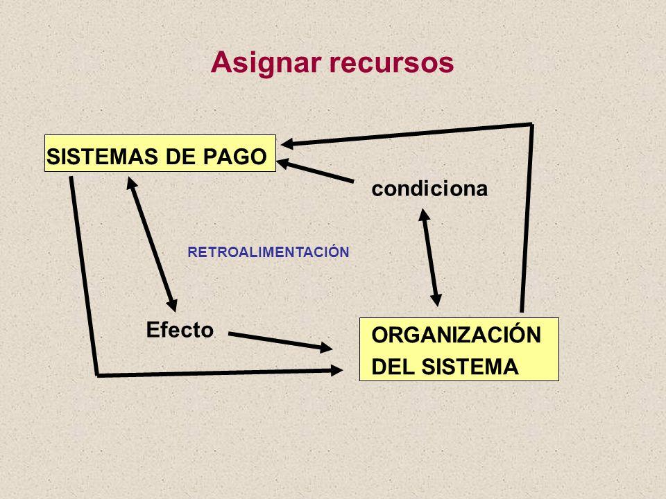 Asignar recursos SISTEMAS DE PAGO condiciona Efecto ORGANIZACIÓN