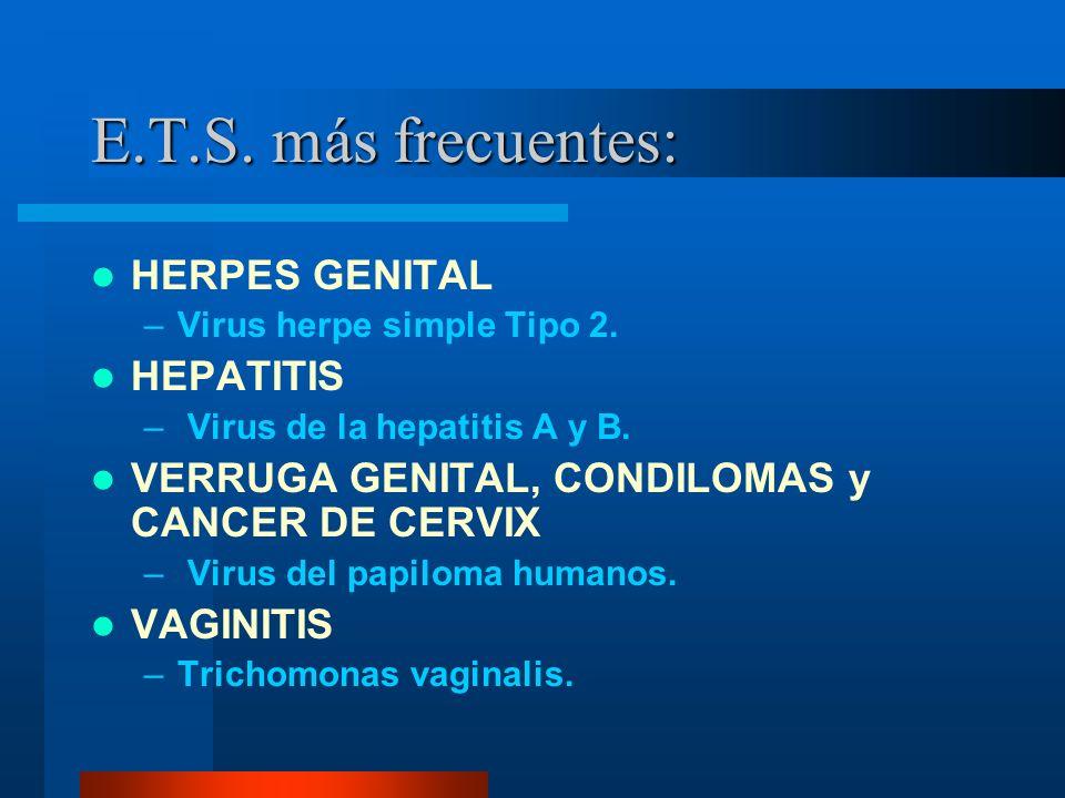 E.T.S. más frecuentes: HERPES GENITAL HEPATITIS