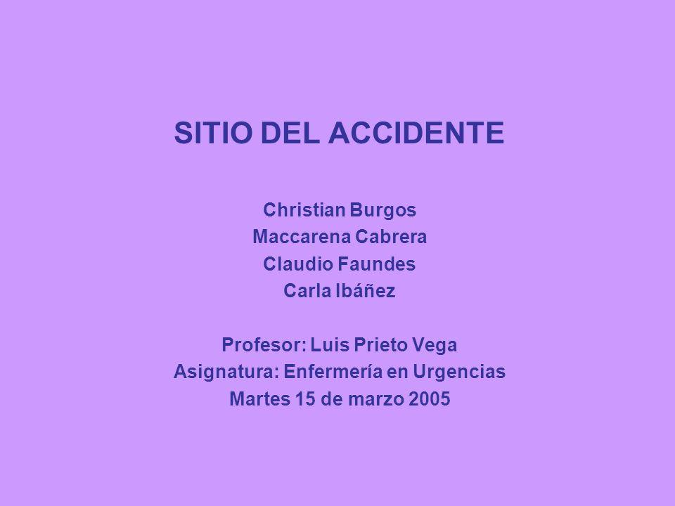 Profesor: Luis Prieto Vega Asignatura: Enfermería en Urgencias