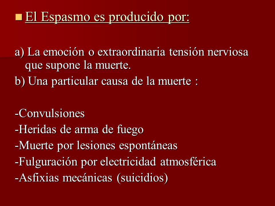 El Espasmo es producido por: