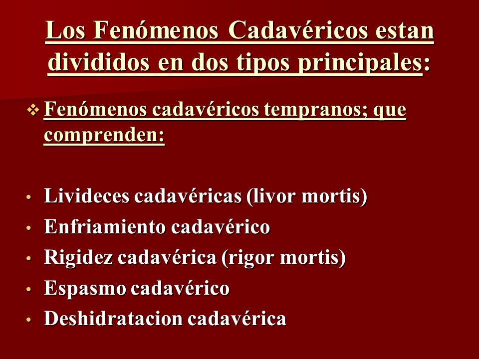 Los Fenómenos Cadavéricos estan divididos en dos tipos principales: