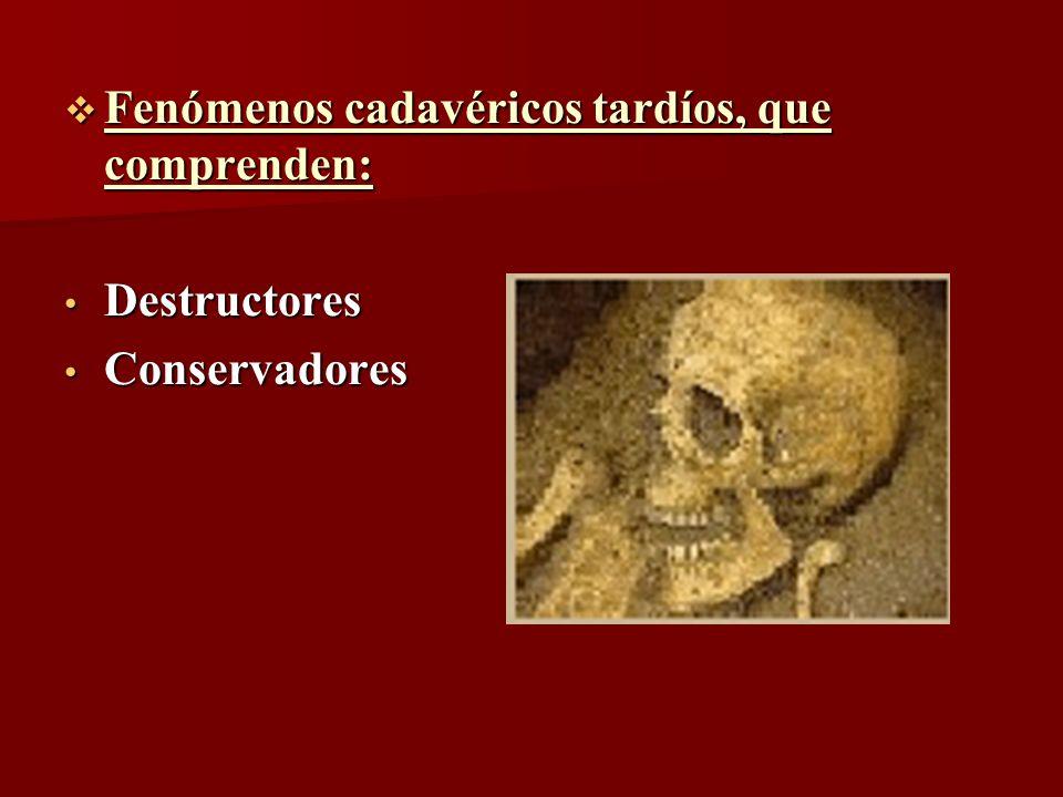 Fenómenos cadavéricos tardíos, que comprenden: