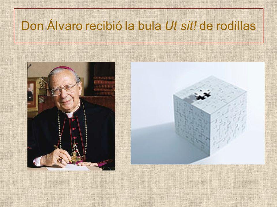 Don Álvaro recibió la bula Ut sit! de rodillas