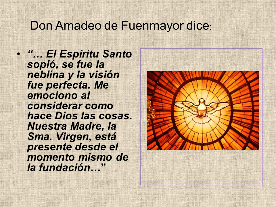 Don Amadeo de Fuenmayor dice: