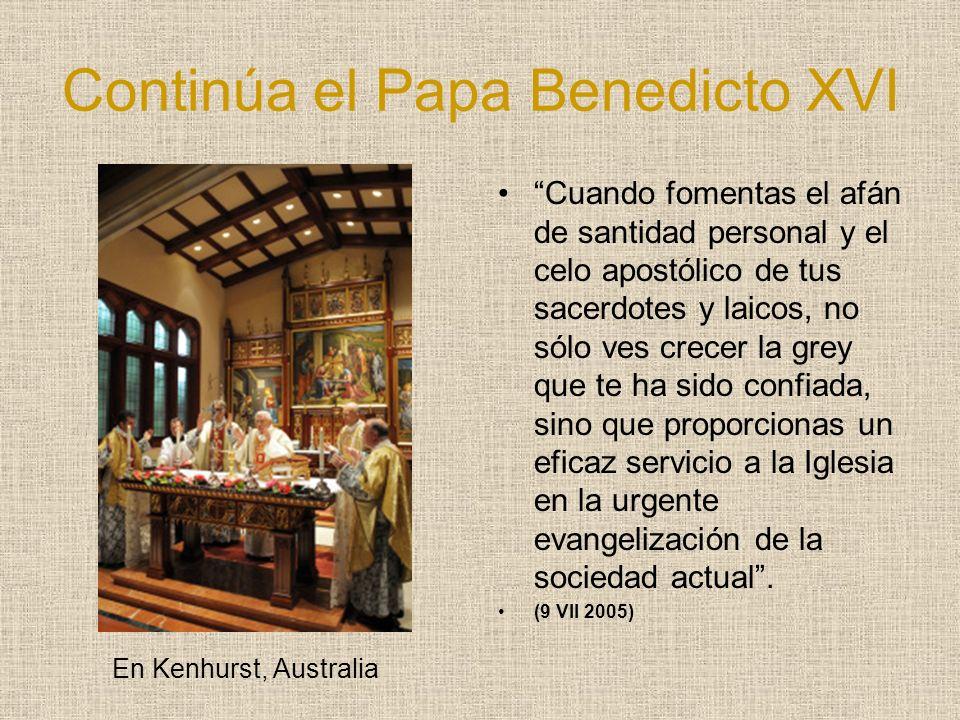 Continúa el Papa Benedicto XVI