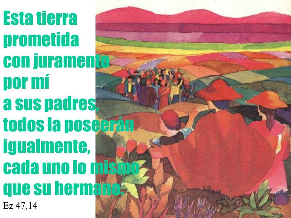 Esta tierra prometida con juramento por mí a sus padres, todos la poseerán igualmente, cada uno lo mismo que su hermano.