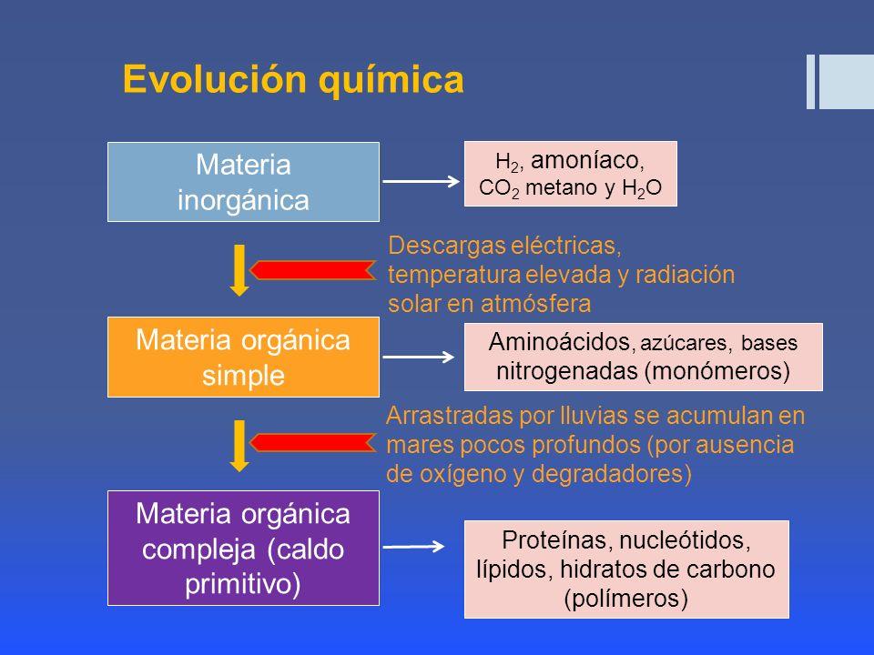 Evolución química Materia inorgánica Materia orgánica simple