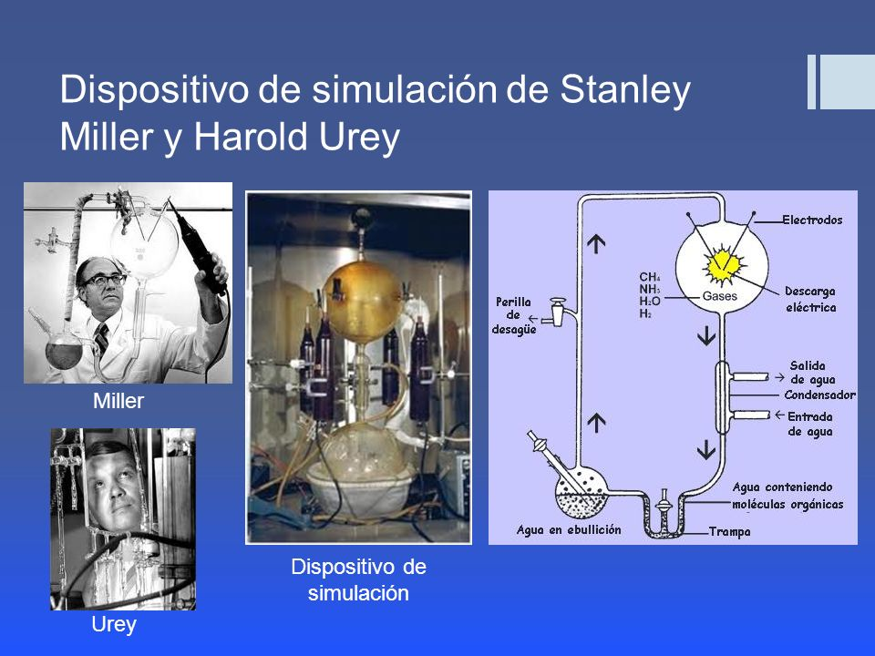 Dispositivo de simulación de Stanley Miller y Harold Urey