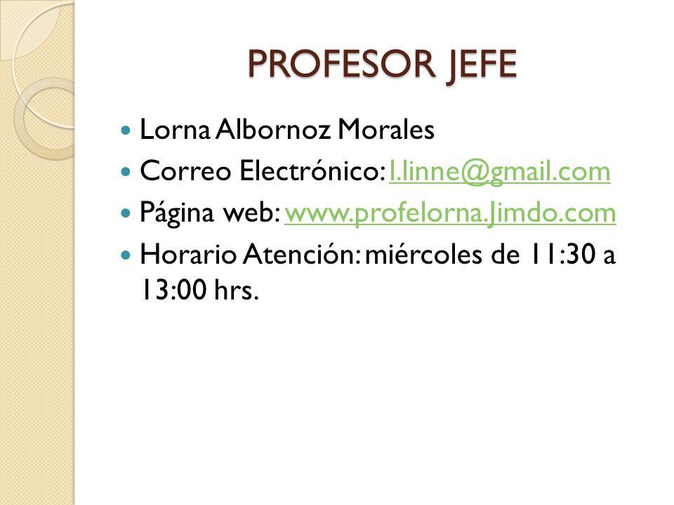 PROFESOR JEFE Lorna Albornoz Morales