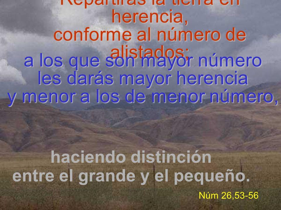 Repartirás la tierra en herencia, conforme al número de alistados;