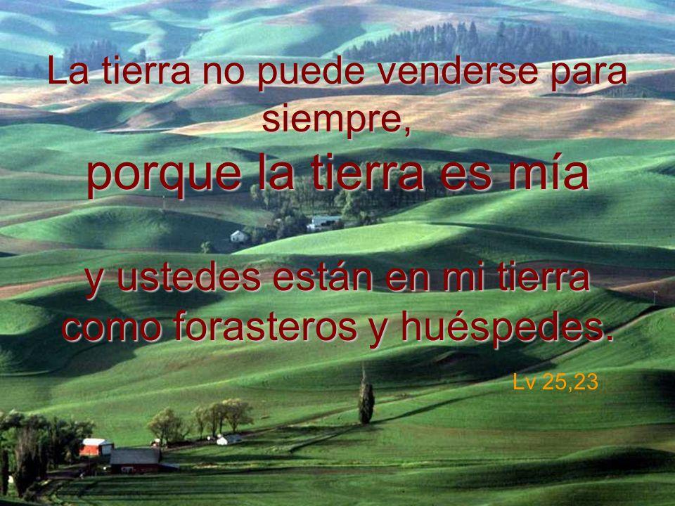 La tierra no puede venderse para siempre, porque la tierra es mía y ustedes están en mi tierra como forasteros y huéspedes.