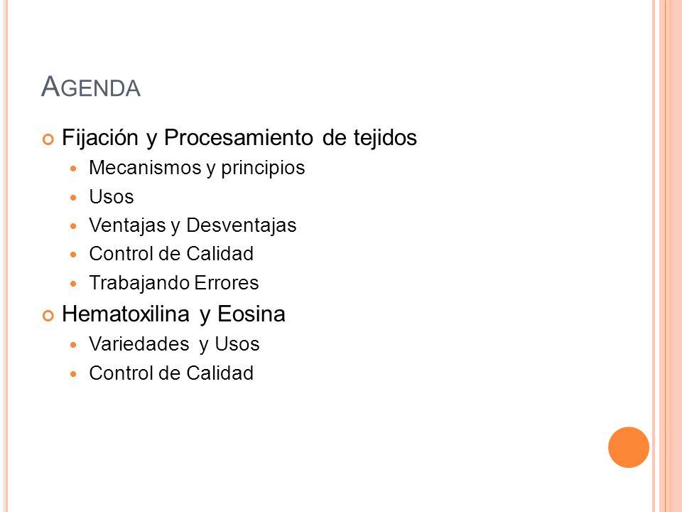 Agenda Fijación y Procesamiento de tejidos Hematoxilina y Eosina
