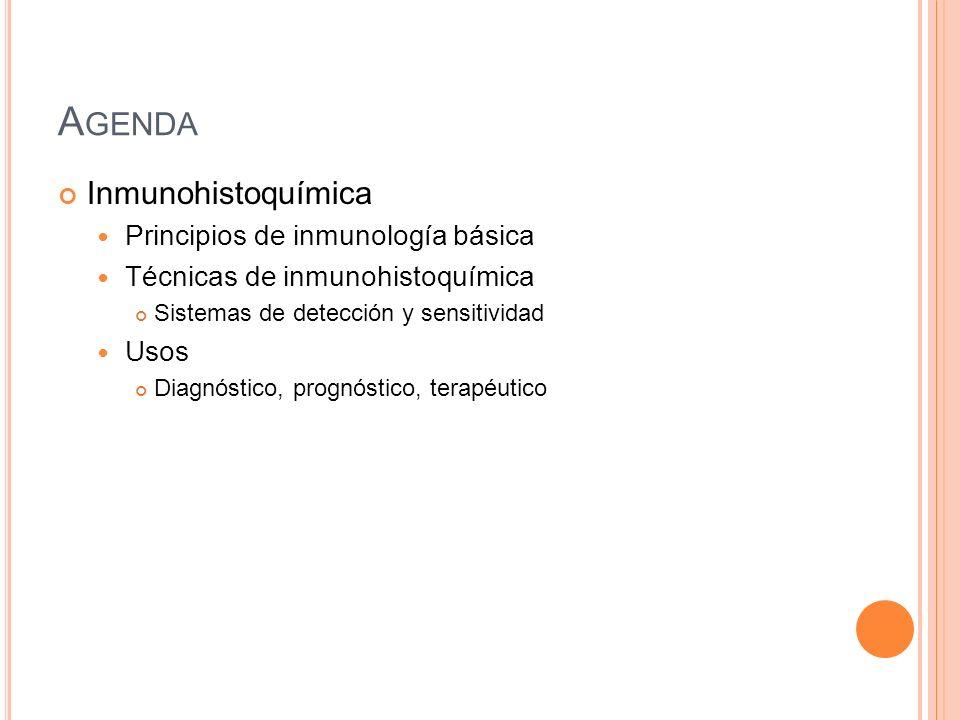 Agenda Inmunohistoquímica Principios de inmunología básica