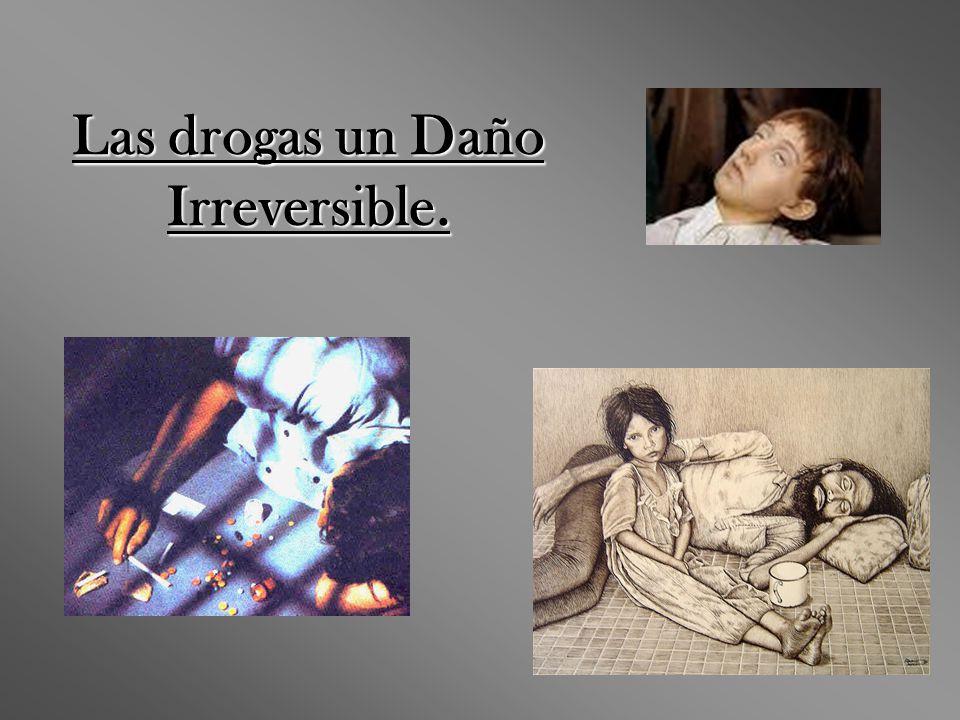Las drogas un Daño Irreversible.