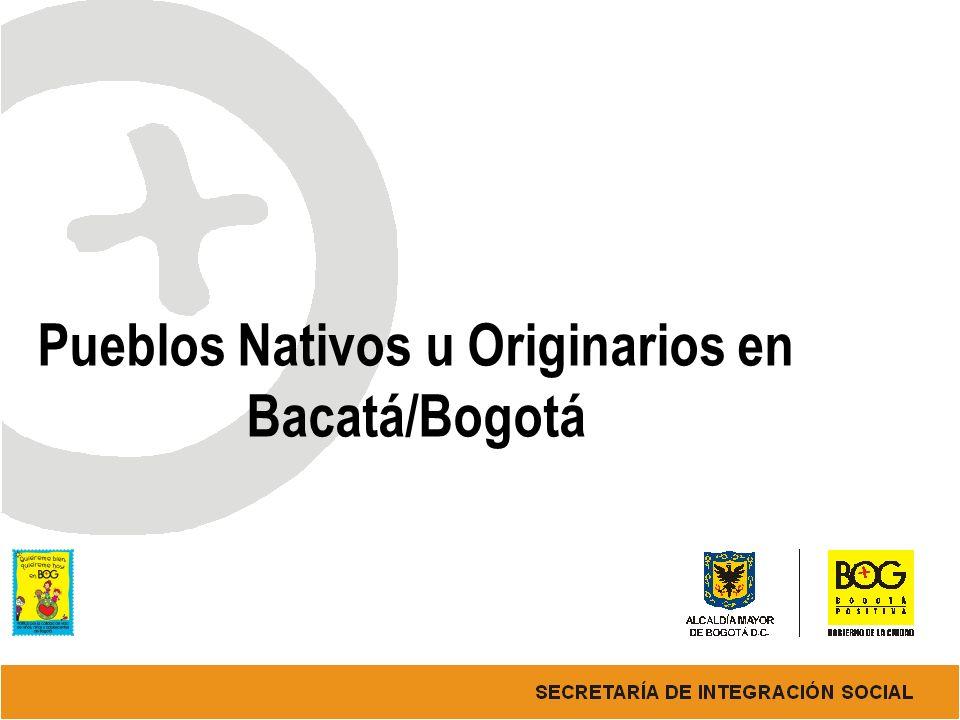 Pueblos Nativos u Originarios en