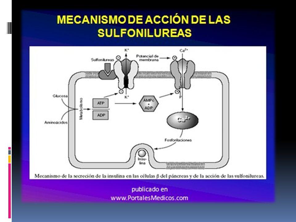 Secretagogos No-Sulfonilureas