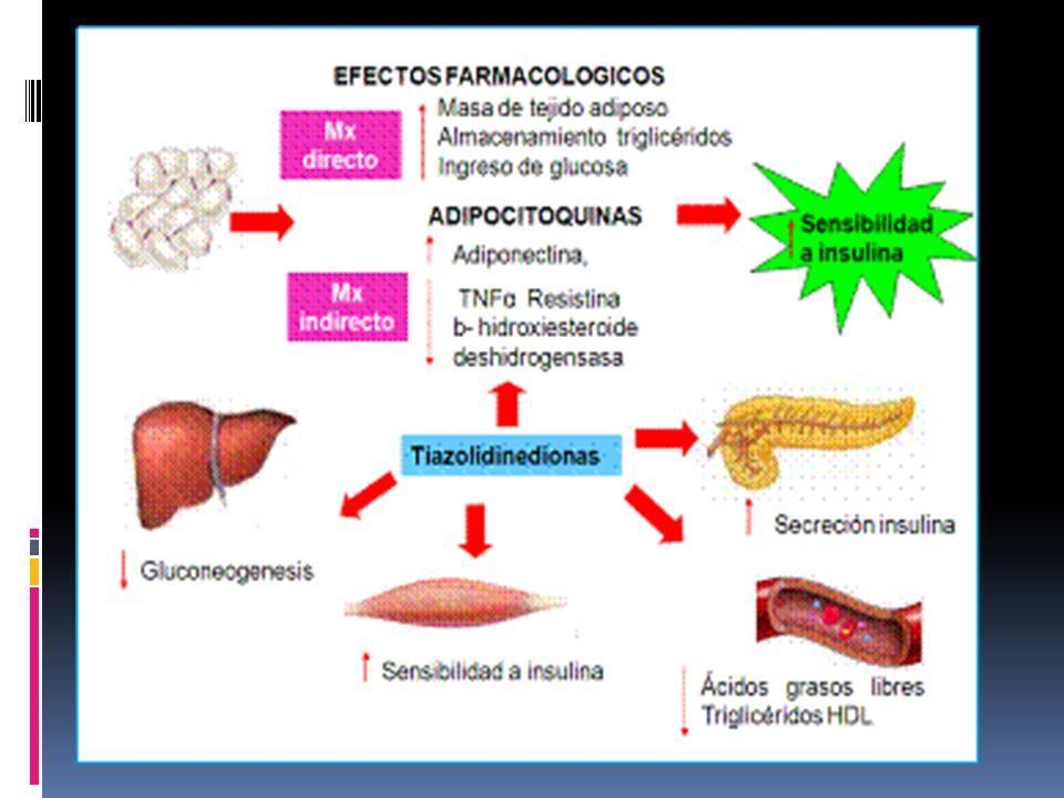 TIAZOLIDINEDIONAS Pioglitazona y rosiglitazona (ADOPT)