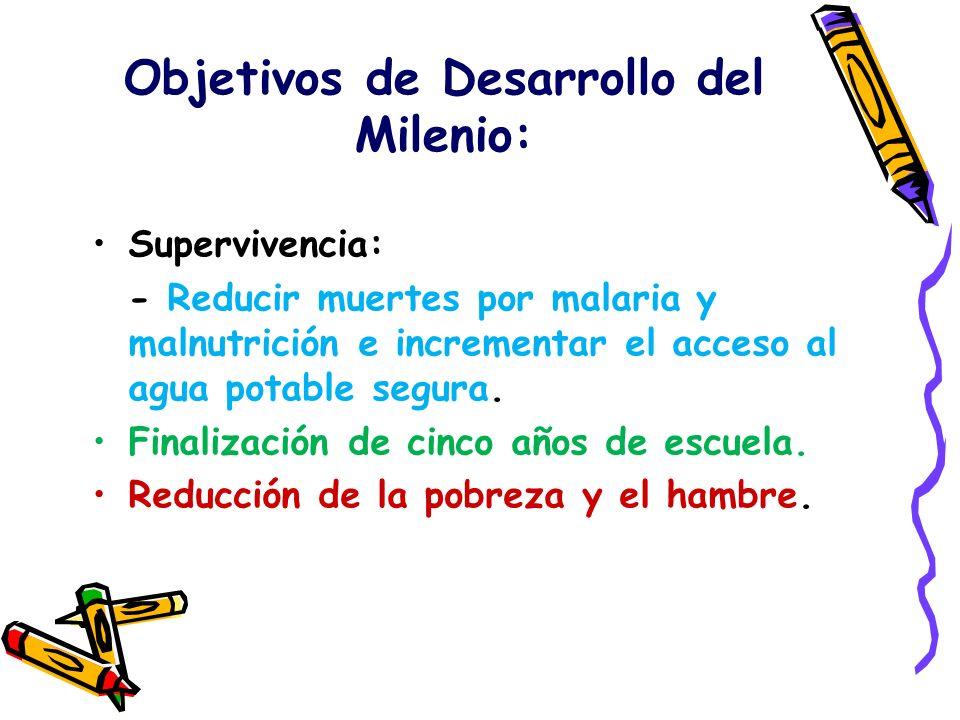 Objetivos de Desarrollo del Milenio: