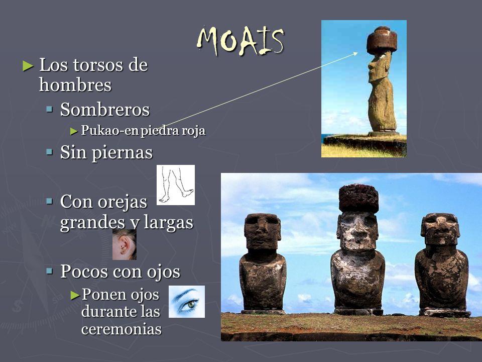 MOAIS Los torsos de hombres Sombreros Sin piernas