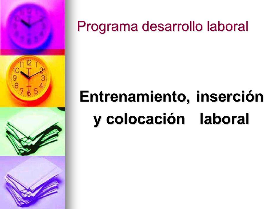 Programa desarrollo laboral