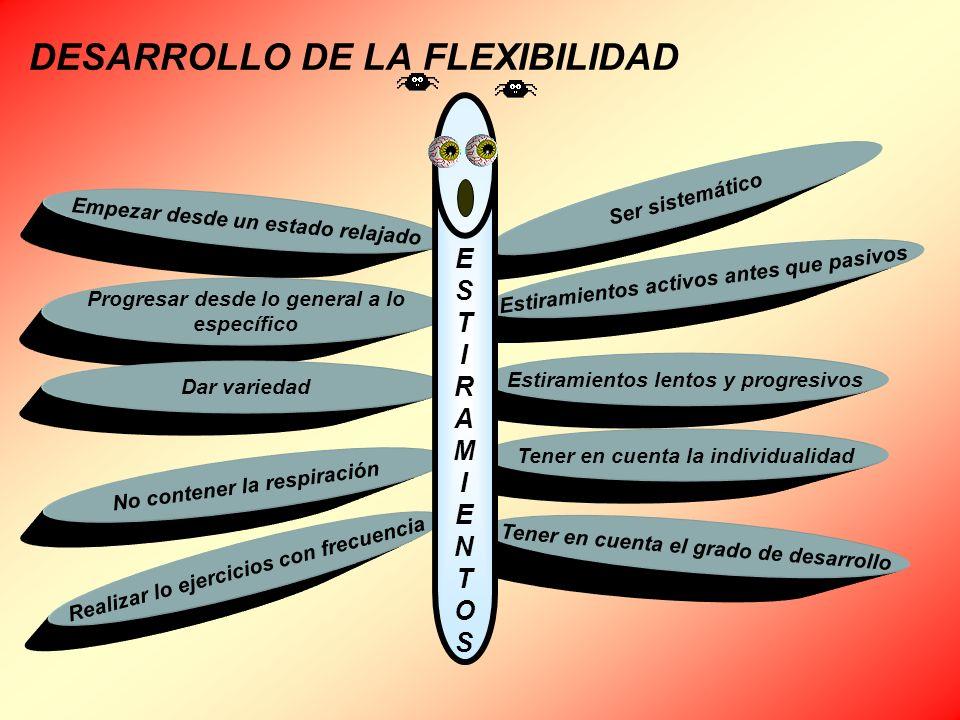 DESARROLLO DE LA FLEXIBILIDAD